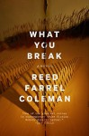 What You Break (A Gus Murphy Novel) - Reed Farrel Coleman