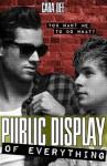 Public Display of Everything - Cara Dee