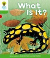 What Is It? - Roderick Hunt, Alex Brychta