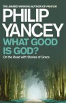 What Good Is God?: On the Road with Stories of Grace. Philip Yancey - Philip Yancey