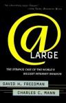 At Large: The Strange Case of the World's Biggest Internet Invasion - Charles C. Mann, David H. Freedman
