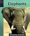 Elephants - Jacqueline Dineen