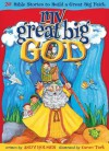 My Great Big God: 20 Bible Stories to Build a Great Big Faith - Andy Holmes, Caron Turk