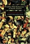 Edible Wild Mushrooms of North America: A Field-to-kitchen Guide - David W. Fischer