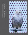 Robert Wilson: Video Portraits - Robert Wilson, Peter Weibel, Norman Bryson