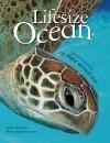 Lifesize: Ocean - Stuart Jackson-Carter, Anita Ganeri