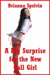 A Big Surprise for the New Call Girl: A Rough First Anal Sex Erotica Story - Brianna Spelvin