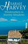Wiedersehen in Stormy Meadows - Sarah Harvey