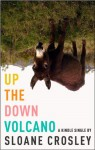 Up the Down Volcano - Sloane Crosley