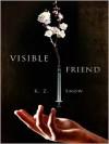 Visible Friend - K.Z. Snow