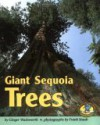 Giant Sequoia Trees - Ginger Wadsworth, Frank J. Staub