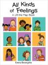 All Kinds of Feelings: A Lift-the-Flap Book - Sheri Safran, Sheri Safran