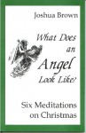 What Does An Angel Look Like? Six Meditations For Christmas - Joshua Brown