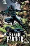 Black Panther: Panther's Quest - Jon McGregor, Gene Colan
