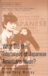What Does the Internment of Japanese Americans Mean? - Alice Yang Murray, Roger Daniels