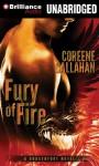 Fury of Fire - Coreene Callahan, Benjamin L. Darcie