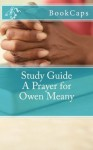 A Prayer for Owen Meany: (A BookCaps Study Guide) - BookCaps