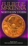 Northern Storm - Juliet E. McKenna