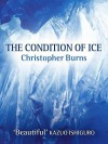 The Condition of Ice - Christopher Burns