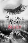 Before You Sleep - Amy Martin