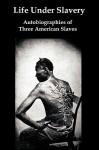 Life Under Slavery: Autobiographies of Three American Slaves - Linda Brent, Henry Bibb, Kate Drumgoold