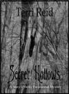 Secret Hollows - Terri Reid