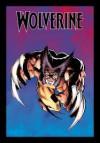 Wolverine (The Ultimate Graphic Novels Collection: Publication Order, #9) - Chris Claremont, Frank Miller
