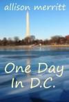 One Day In D.C. - Allison Merritt