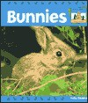 Bunnies - Kelly Doudna