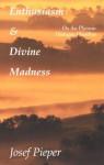 Enthusiasm And Divine Madness - Josef Pieper, Richard Winston, Clara Winston