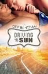 Driving Into the Sun - Dev Bentham
