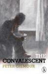 The Convalescent (Vagabonds) - Peter Gilmour