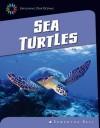 Sea Turtles - Samantha Bell