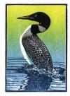 Boreal Birds [With 8 Envelopes] - Rick Allen