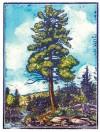 Very Nearly True Tales Notecards - Rick Allen