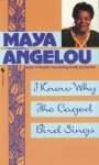 I Know Why the Caged Bird Sings (Blooms Guides) - Maya Angelou