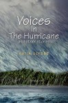 Voices in the Hurricane and Other Stories - Katia D. Ulysse