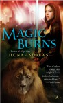 Magic Burns - Ilona Andrews