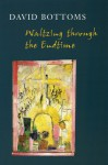 Waltzing Through the Endtime - David Bottoms