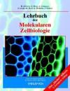 Lehrbuch Der Molekularen Zellbiologie - Bruce Alberts