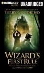 Wizard's First Rule - Terry Goodkind, Sam Tsoutsouvas
