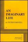 An Imaginary Life - Peter Parnell, Peter Parnall