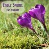 Early Spring - Fay Inchfawn, Annie Coleman, Chip, Curtis Brown, Dilini Jayasinghe, Graham Williams, Kristin Luoma, Fox in the Stars, Stefan Schmelz