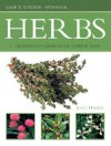 Herbs - Jessica Houdret