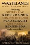 Wastelands: Stories of the Apocalypse - Orson Scott Card, John Joseph Adams, Stephen King, George R.R. Martin
