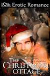 The Christmas Cottage - Joe Filippone