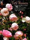 Tea Roses: Old Roses for Warm Gardens - Lynne Chapman, Jenny M. Jones, Billy West, Noelene Drage, Di Durston, Hillary Merrifield