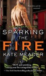 Sparking the Fire (Hot in Chicago) - Kate Meader
