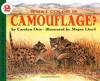 What Color Is Camouflage? - Carolyn B. Otto, Megan Lloyd