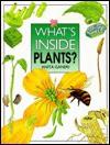 What's Inside Plants? (What's Inside?) - Anita Ganeri